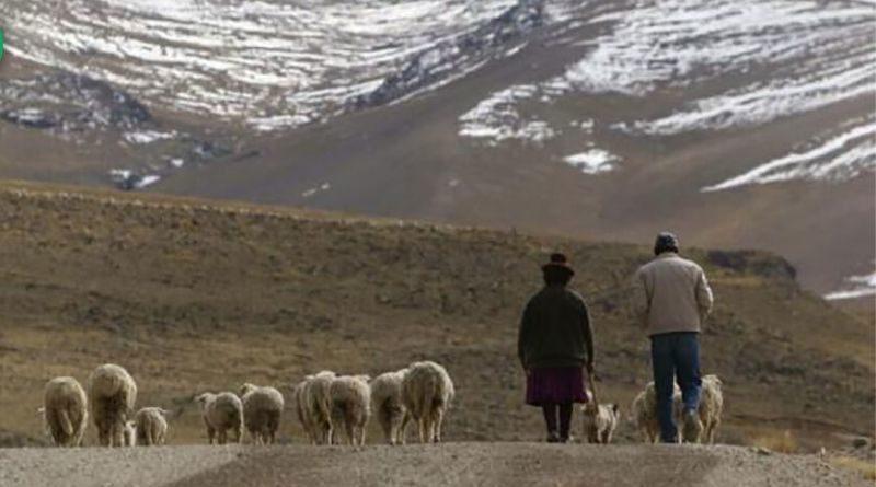 Descenso de temperatura nocturna en la sierra media y alta de la región Arequipa